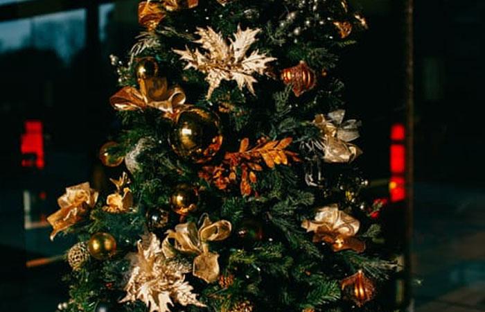 christmas-tree-bristol
