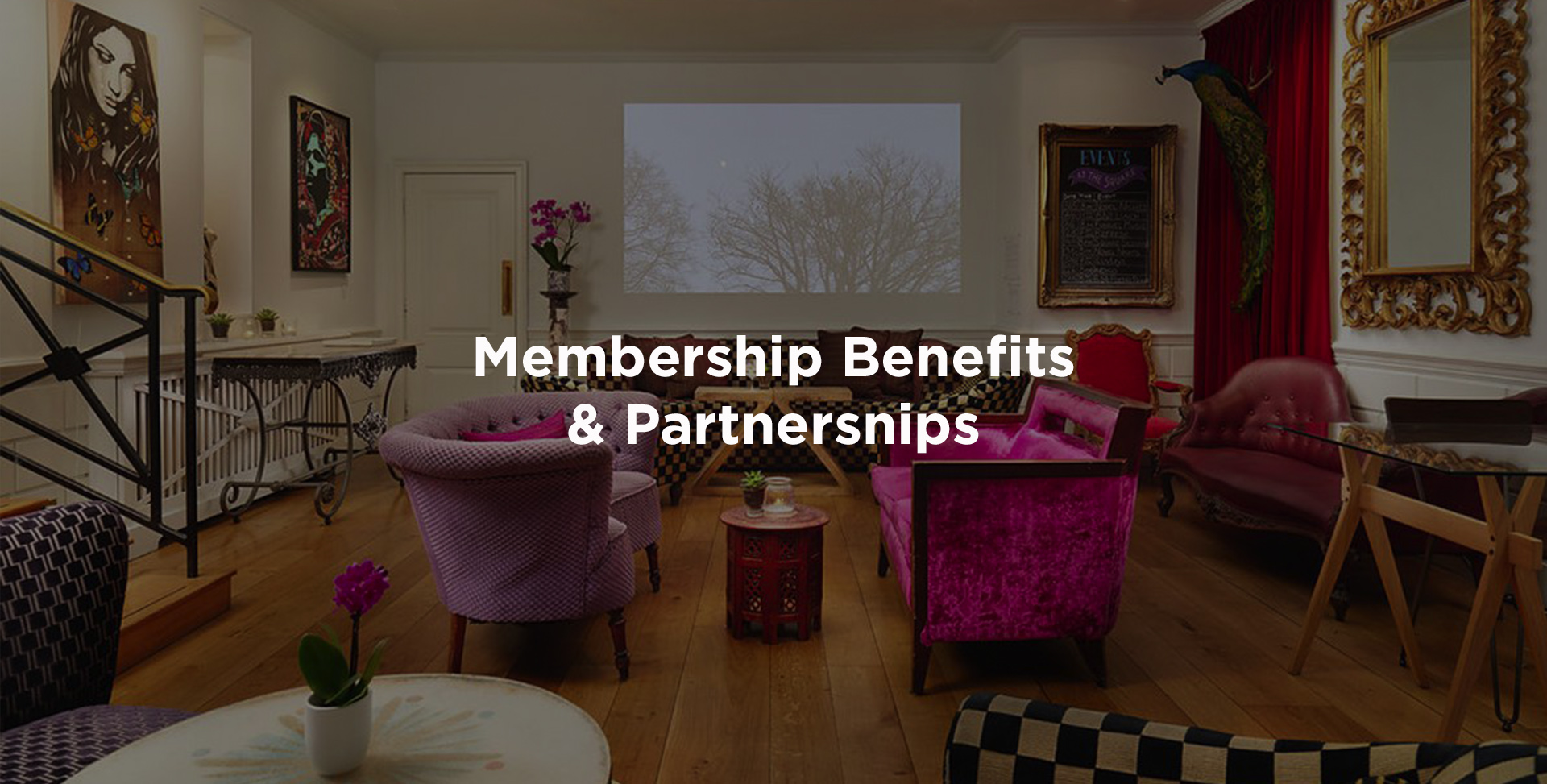 membership-benefits-and-partnerships