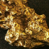 Are you a Gold Digger?